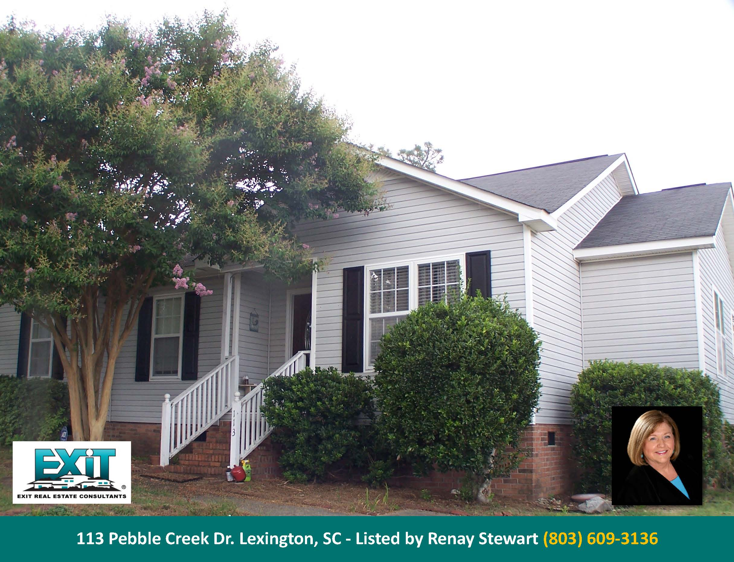 Just Listed In Pebble Creek