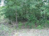 Lexington SC Lots and Land for Sale